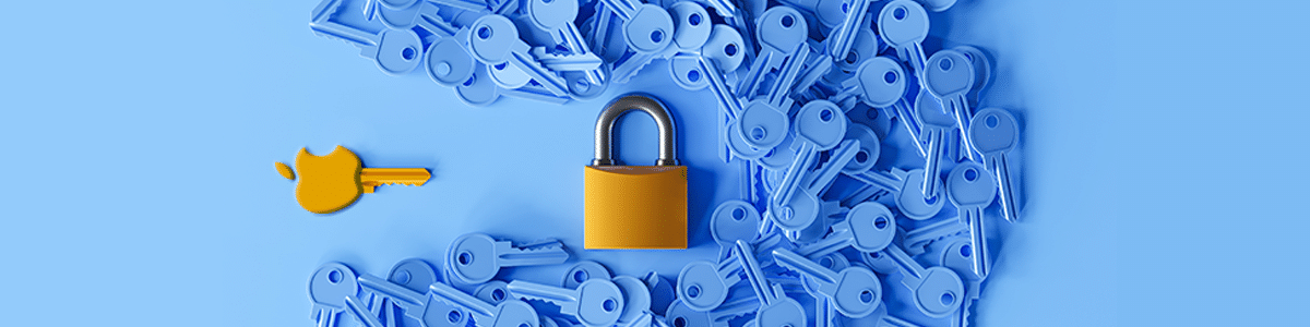Apple and google security updates